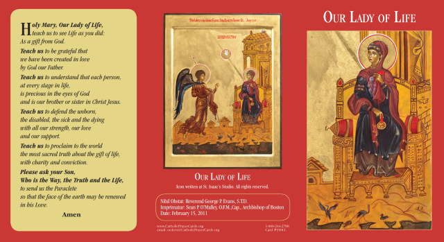 Our Lady of Life Tri-fold Prayer Card (English OR Spanish)